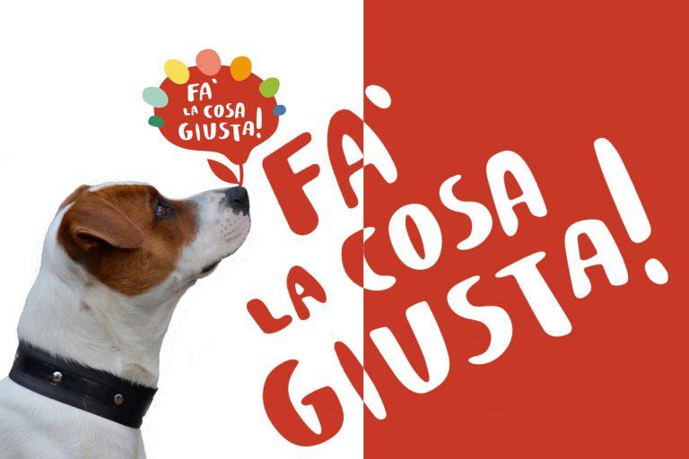 falacosagiusta_milano_dog4president